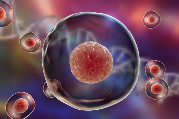 Human or animal cells on a background with DNA (Forrás: 123rf.com)